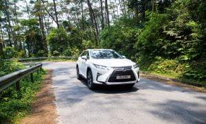 White Lexus Driving Through Forest
