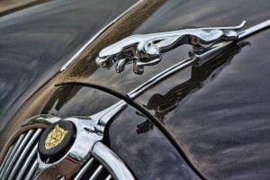 Image of Jaguar Logo
