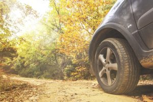 Fall Driving Tire Image